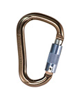 Black Diamond Rocklock Locking Carabiner